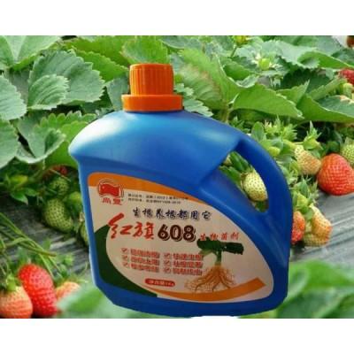 大棚蔬菜专用生根肥生根剂低温快速生根毛细根增多含黄腐酸水溶肥